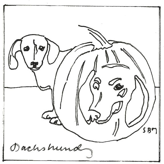 16 Best Dachshund Coloring Pages Images