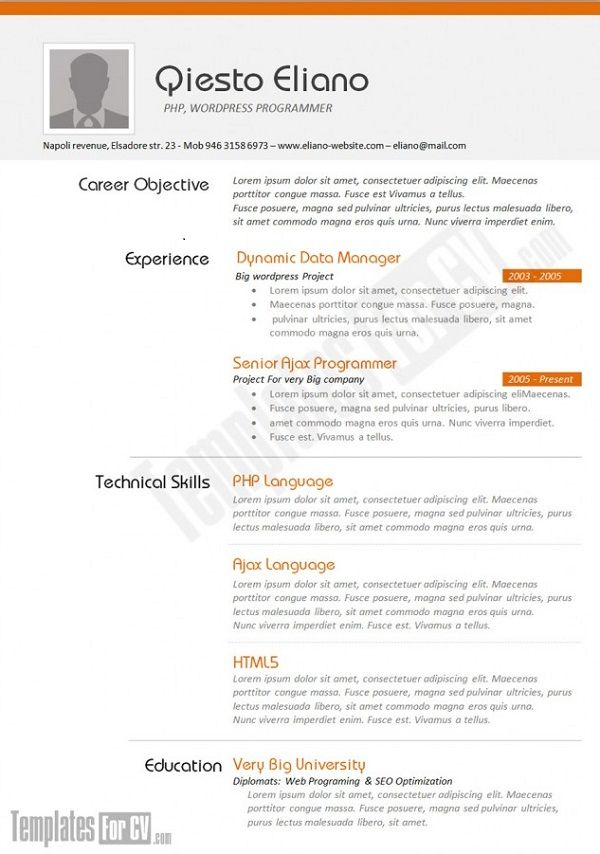 43 best Resume Designs images on Pinterest Resume design, Resume - sample resume for computer programmer