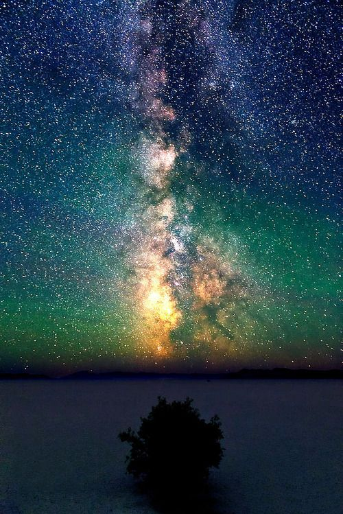 Outside on a warm summer night gazing upward at the Milky Way and a sky full of stars.
