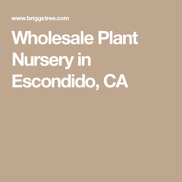 Wholesale Plant Nursery in Escondido, CA