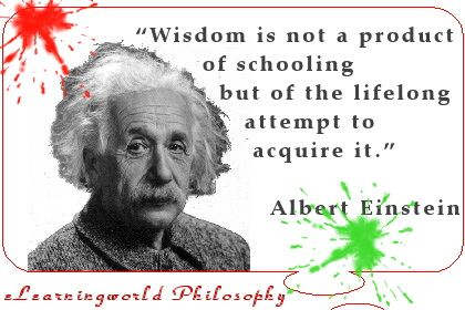 """""""Wisdom is not a product of schooling but of the lifelong attempt to acquire it."""" Albert Einstein"""