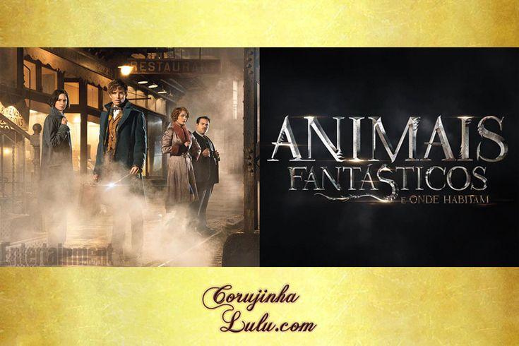Novidades sobre #HarryPotter : oitavo livro, novos filmes (como #AnimaisFantásticos ) e peça de teatro | www.corujinhalulu.com