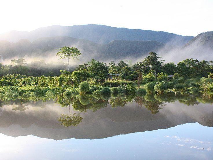 Gunung Mulu Nationalpark, Borneo, Malaysia
