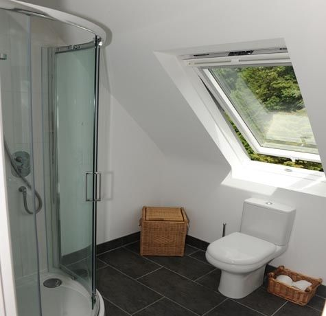 30 best loft bathroom ideas images on pinterest attic for Bathroom ideas loft conversion