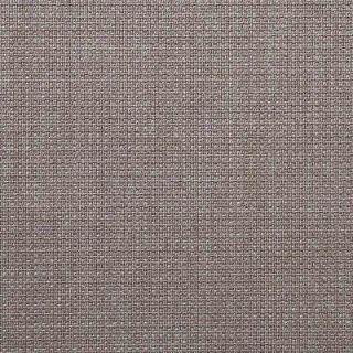 Aberdeen Smoke^   Warwick Fabrics Australia