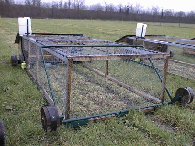 Cuniculture.info Plans cage mobile élevage Lapins sur prairie