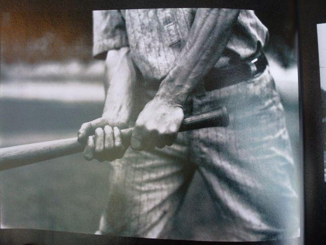 honkbal boek Washington