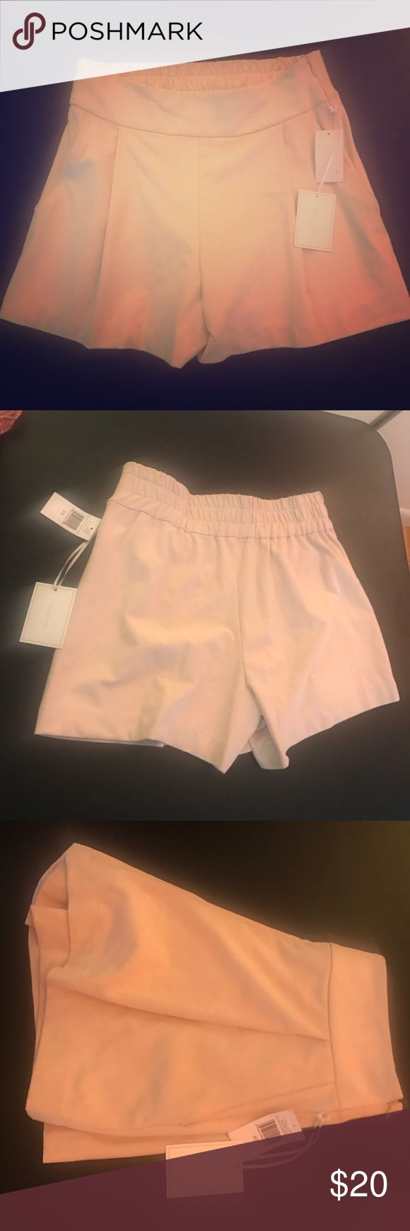 Suede Pleated Beige Shorts NWT Lord & Taylor, NWT Shorts