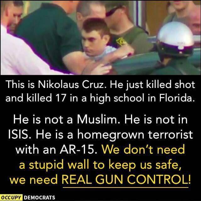 No wall! Just gun control