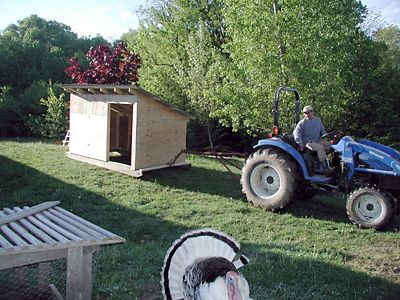 movable goat house- #babygoatfarm
