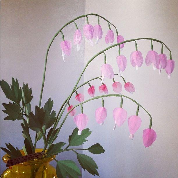 Livia Cetti - Paper Flowers