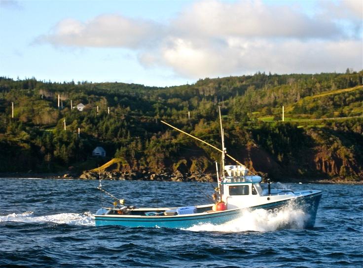 Giant bluefin tuna fishing in nova scotia sur reality for Nova scotia fishing