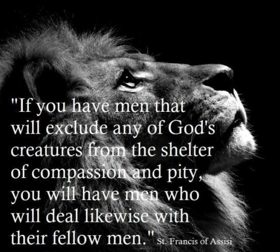 """""""If you have men that will exclude any of God's creatures from the shelter of compassion and pity, you will have men who will deal likewise with their fellow men."""" (St. Francis of Assisi)"""