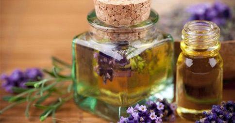 L'olio essenziale di rosmarino possiede numerosissimi benefici per la nostra salute. Una delle piante più [Leggi Tutto...]