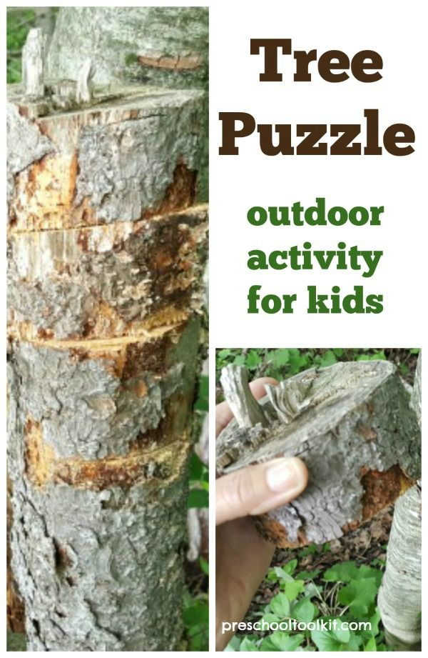 Make a tree puzzle for an awesome outdoor STEAM activity for kids