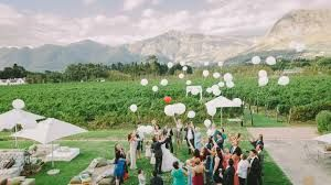 Image result for holden manz weddings