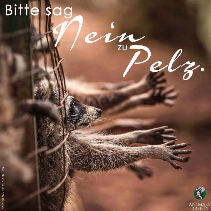 """Foto: """"Bitte sagt """"Nein"""" zu Pelz"""" !!! #Echtpelz  #Tierquälerei  #Brutalität  #Grausamkeit  #Mord"""