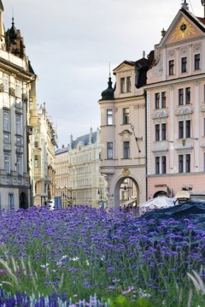 go2prague.com Streets of Old Town, Prague. A blooming beauty