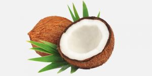 Importance of Coconut in Puja in Hinduism. जानिए हिन्दू पूजा में क्या महत्त्व है नारियल का!