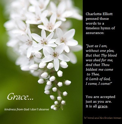 Spring Flower Poems Quotes: 44 Best Images About Prose, Poetry And Christian Sayings