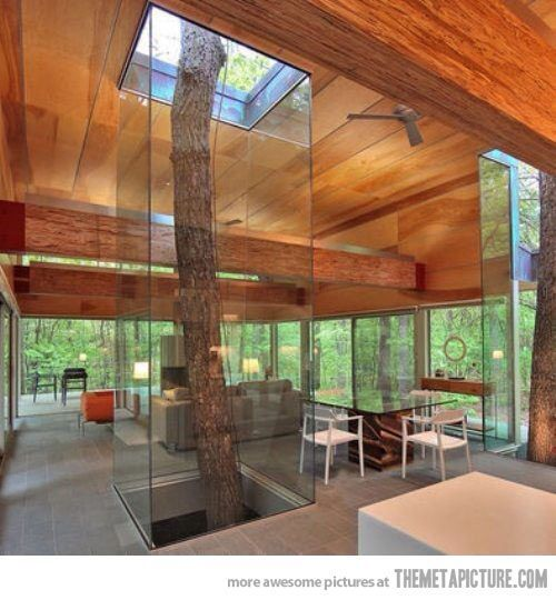 Trees in cabins? Yes!