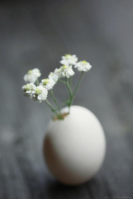 Egg vase #easter
