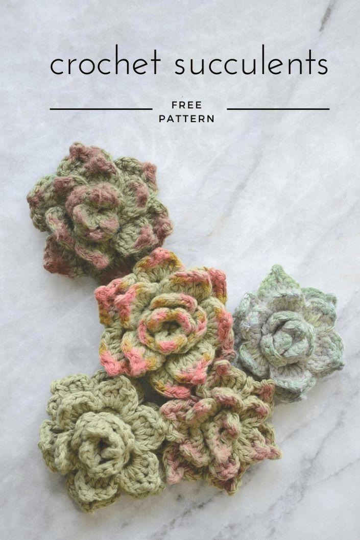 Crochet Succulents | Häkeln | Pinterest | Crochet, Knitting und ...