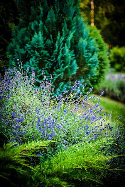 http://babatuhome.blogspot.com/ Foto Marta Mrozek