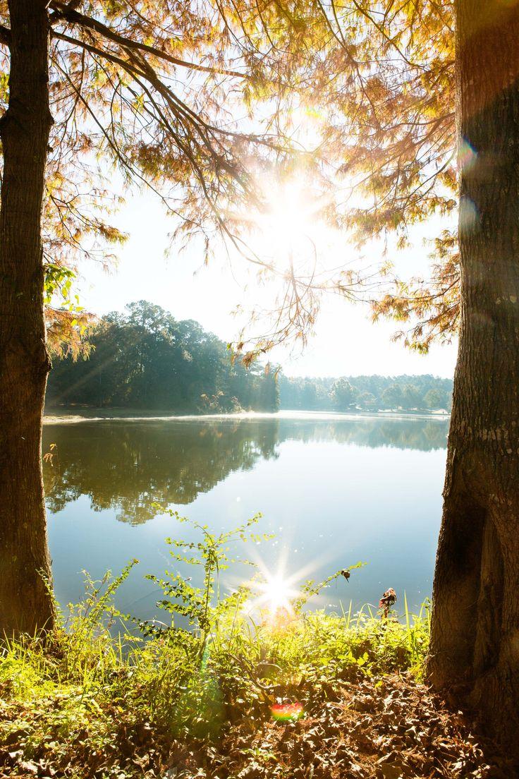 Alabama baldwin county stockton - Live Oak Landing At Bay Minette Al Bass Fishing Anyone