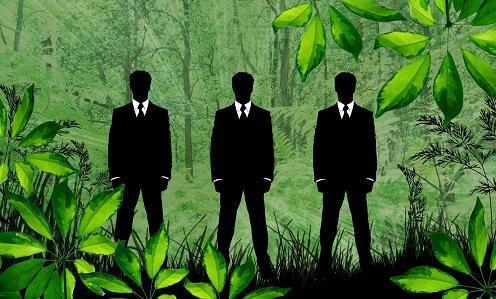 4 tendencias para negocios sustentables