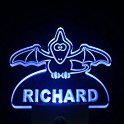 ws1017-tm Pterodactyl Dinosaur Personalized Night Light Baby Kids Name Day Sensor LED Sign