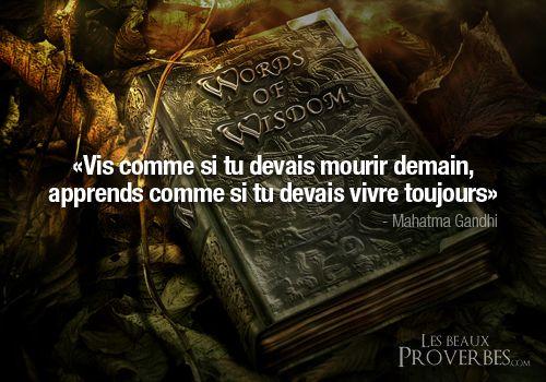 «Vis comme si tu devais mourir demain, apprends comme si tu devais vivre toujours» – Mahatma Gandhi