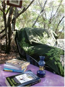 The forest reading room.