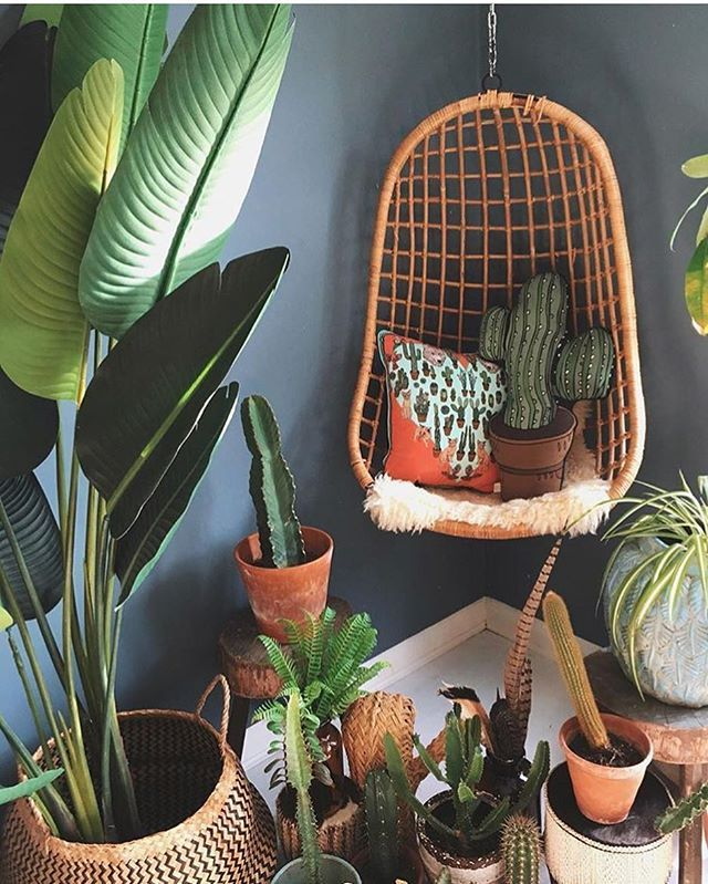 Morning And Hy Monday Lovely Indoor Plant Inspo For You Guys Cos I Would Love A Swing Chair Cool Corner Like This From La Sidhu Now Back To Work
