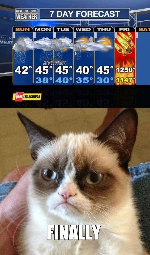 Something tells me Grumpy Cat is going to be grumpier than usual on Saturday