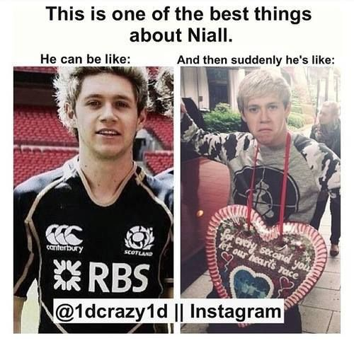 Either way, I love Niall. :)