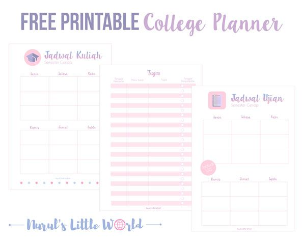 college-planner-preview