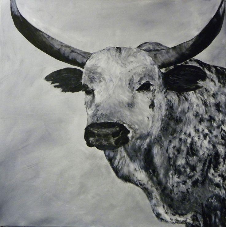 African Nguni Bull - oil on canvas