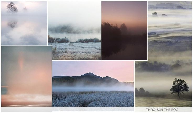 THROUGH THE FOG Photo reals of the woods, the forest and the marshland are prominent, as we see the fog imagery as a new ombre design. Pastels are key although more mystery is added when the image fades to an almost black. These photos take us from dusk to dawn.
