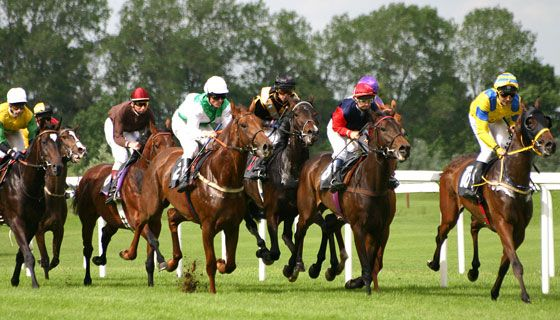 What is your strategy for today's #HorseRacing #bets? Makes your strategy solid talk with the #TipsterUK. Get #FreeRacingTips for the lay bets. Know todays horse racing tips through this link…