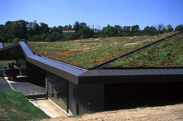Green roof in France