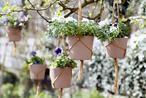 Low budget idee voor kleine balkons en tuinen; Hangende tuintjes