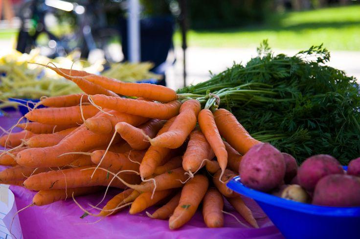 Régal de légumes = bouilli gaspésien