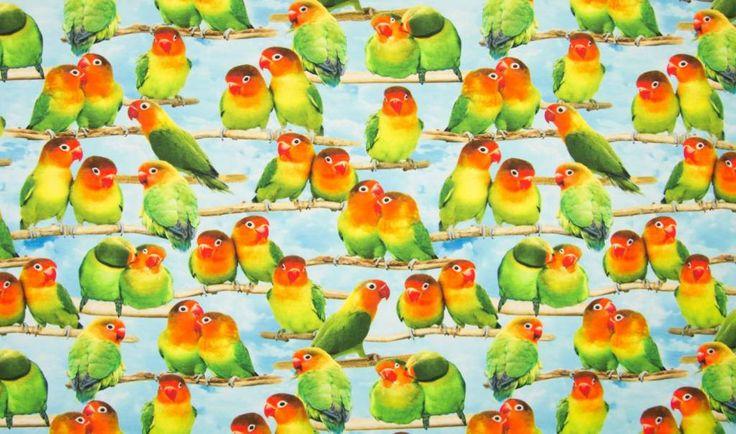 Qjutie Kids Tricot Stof Parakeets, Digitaal Print ...
