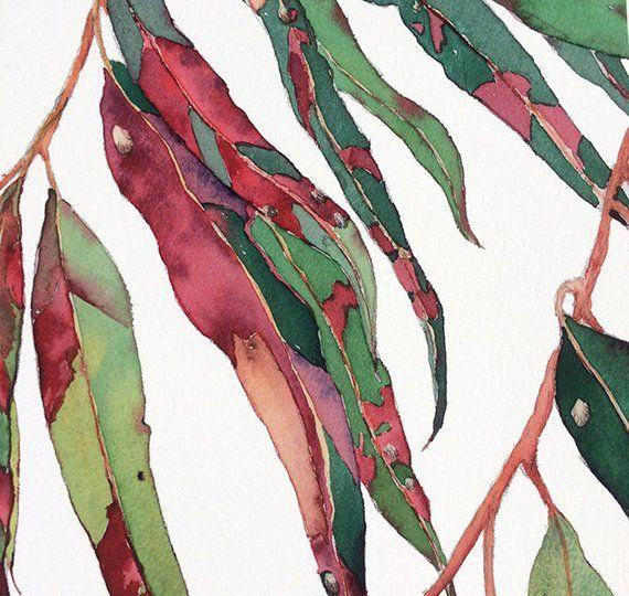 Gum Tree Print A5 10x8 A4 14x11 A3 A2 Botanical Watercolour