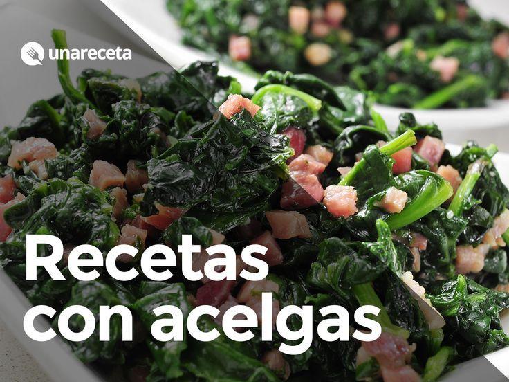 ¡12 recetas saludables con acelgas! #RecetasConAcelgas #Acelgas #RecetasConVerduras #RecetasSaludables