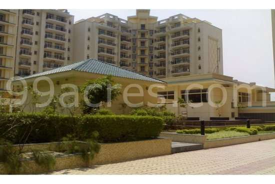 3 BHK Apartment For Rent In Suncity Heights Gurgaon - 3 Bedroom / BHK Apartment For Rent In DLF Golf Course Road Gurgaon - Click.in