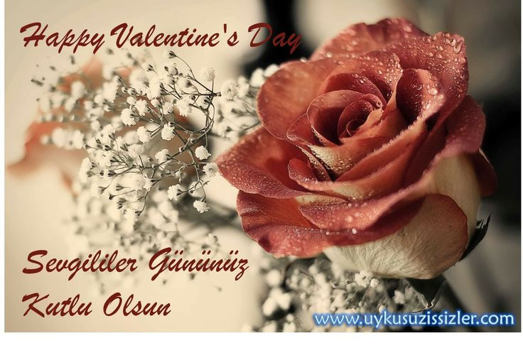 Sevgililer Gününüz Kutlu Olsun. Happy Valentine's Day.