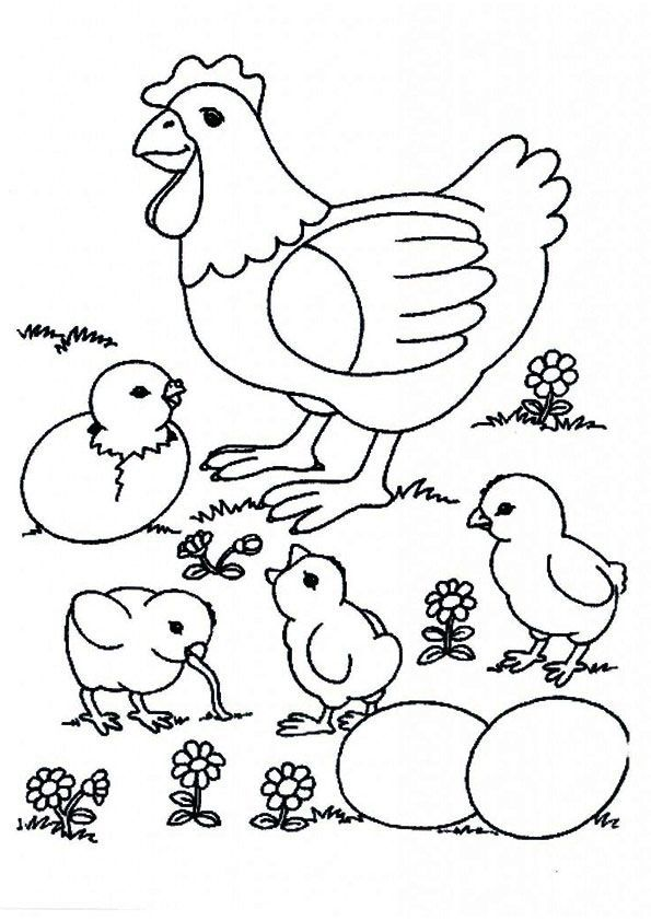 10 Cute Chicks Coloring Pages For Your Toddlers In 2020 Farm Animal Coloring Pages Bird Coloring Pages Farm Coloring Pages