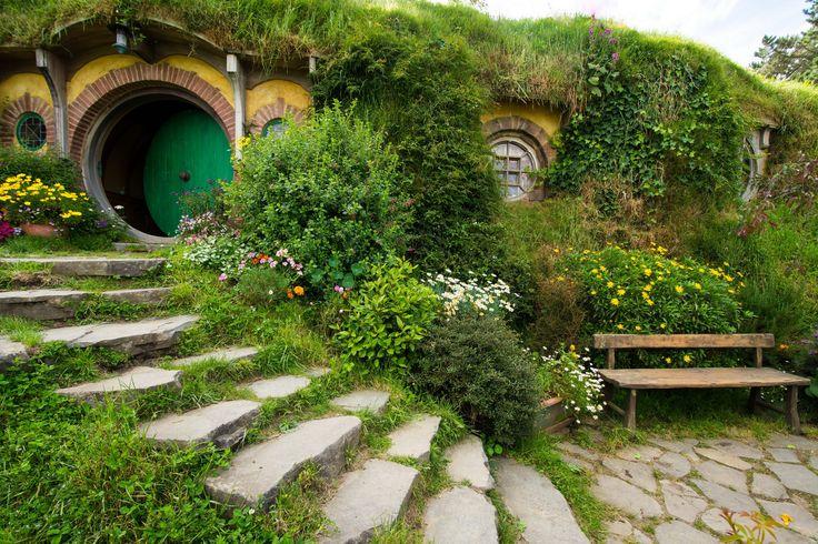 Dom, Schody, Roślinność